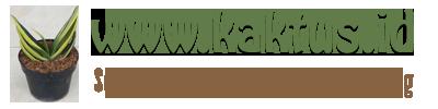www.kaktus.id